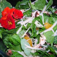 Nasturtium Salad By: Jennifer ohsweetbasil.com