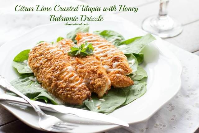 Citrus Lime Crusted Tilapia with Honey Balsamic Drizzle