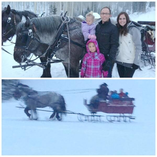 horse drawn sleigh at fireside dining