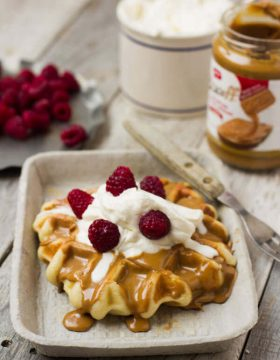 Waffle Love waffles are a huge hit in #Utah and now you can make your own #wafflelove #leige waffles from home! ohsweetbasil.com-2