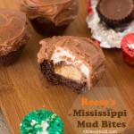 Reese's Mississippi Mud Bites
