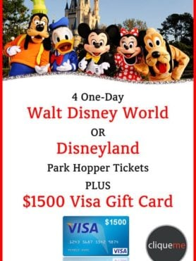 Disney Park Hopper Giveaway Plus $1500