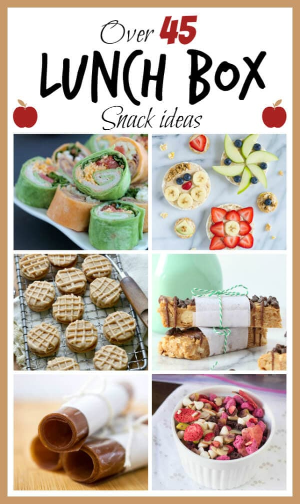 Lunch Box Snack Ideas - Oh Sweet Basil