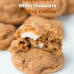 Top Holiday Cookies for 2014 ohsweetbasil.com