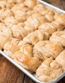 The best recipe we've made for whole wheat potato rolls! ohsweetbasil.com