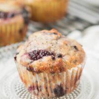 I love these Orange Glazed Blackberry Poppy Seed Muffins ohsweetbasil.com
