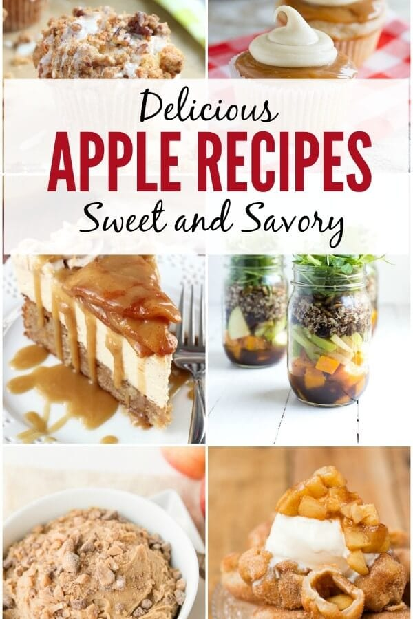 Delicious Apple Recipes on Oh Sweet Basil including sweet and savory fall treats that you will love!
