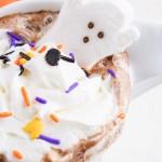 Casper's Cocoa Mix