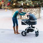 Nuna Pipa and IVVI Car Seat and Stroller