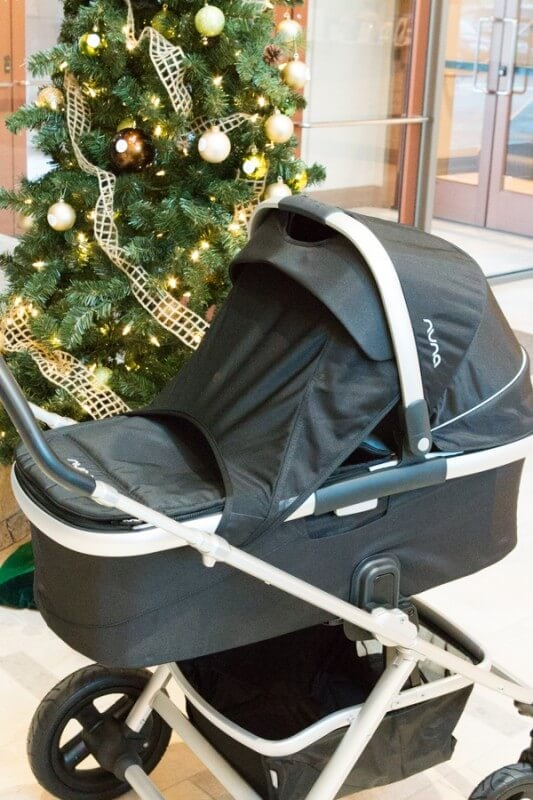 Nuna Pipa and IVVI Car Seat and Stroller - Oh Sweet Basil