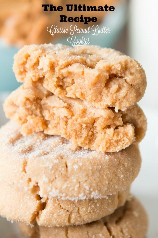 The ultimate recipe for a classic peanut butter cookie! Perfectly soft and oh my goodness good. ohsweetbasil.com