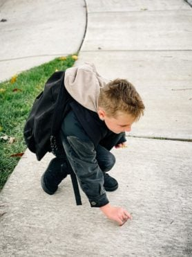a photo of a little boy pick up worms from the sidewalk.