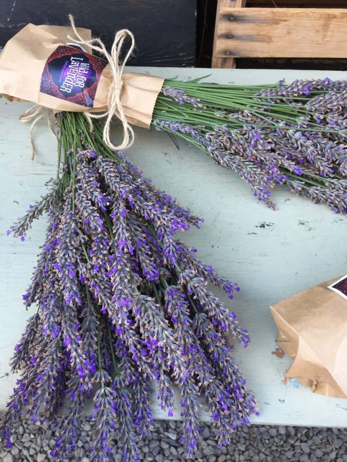 lavendar This may not be a recipe but if you're anything like us you like to get out and see the country you live in and eat as much good food as possible, so obviously I had to share some of my favorites both new and old for Seaside Oregon with a dash of Portland.