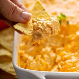 A chip that has been dipped in buffalo chicken dip. There is shredded chicken and melted cheese on the chip. More chips are in the background.