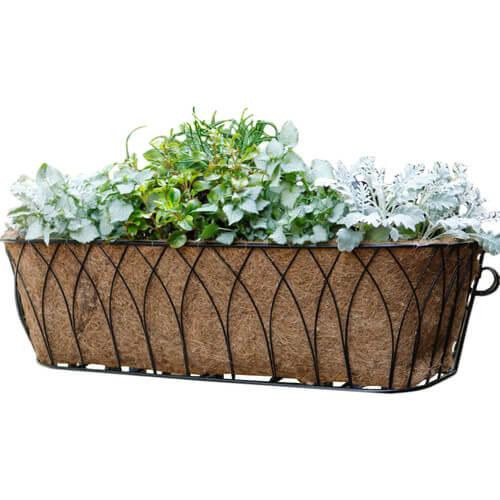 Nelumbo+Rectangular+Window+Box+Planter