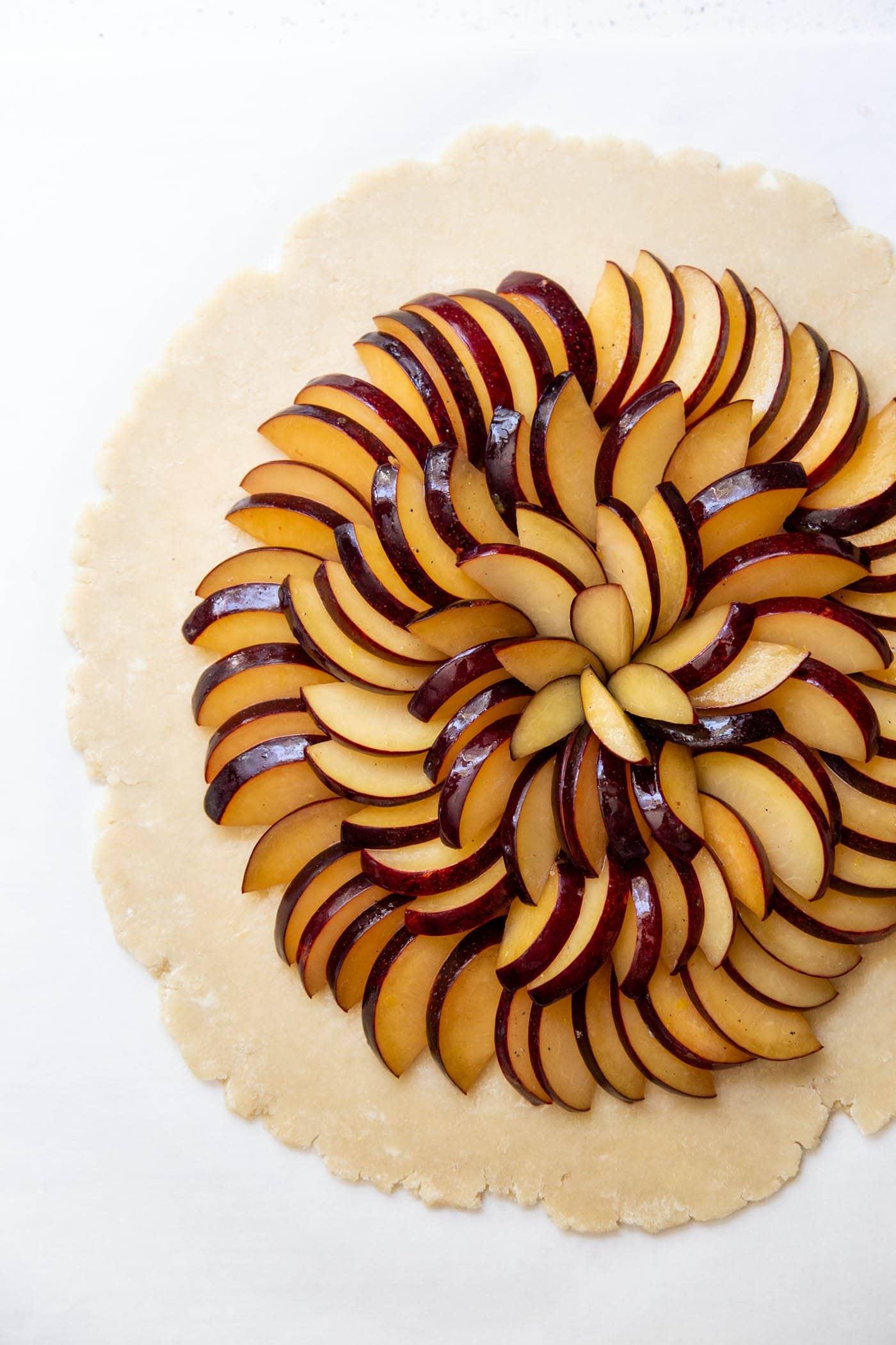 Assembling plum slices on pie crust