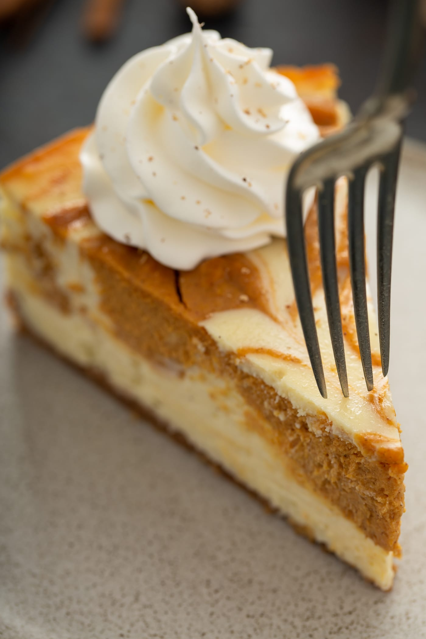 A slice of swirled pumpkin cheesecake topped with a dollop of whipped cream. A fork is piercing the piece of cheesecake.