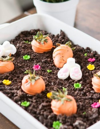 This turned out awesome and so easy! No bake chocolate oreo bunny garden ohsweetbasil.com