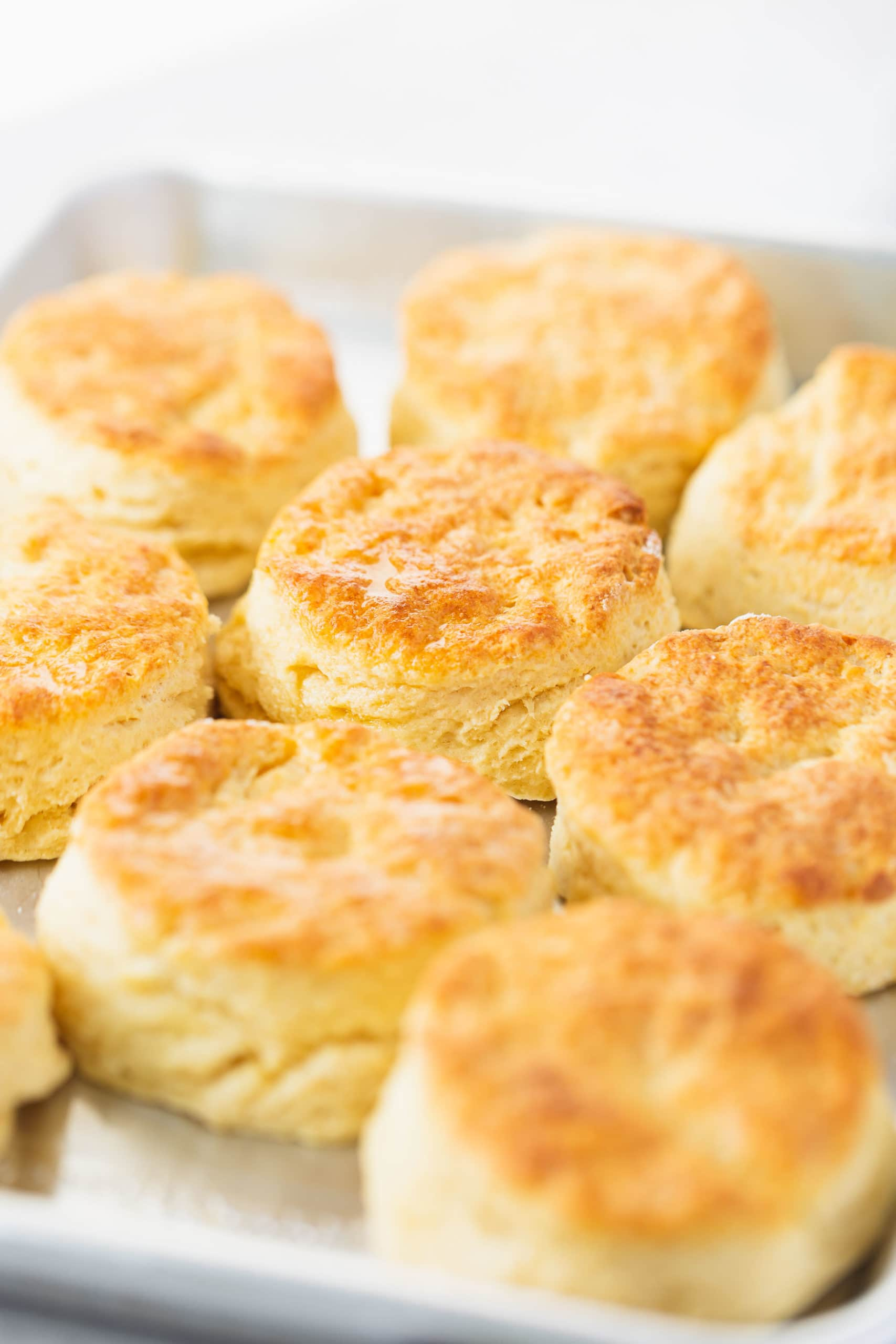 A pan full of buttermilk biscuits. They are baked to a golden brown.
