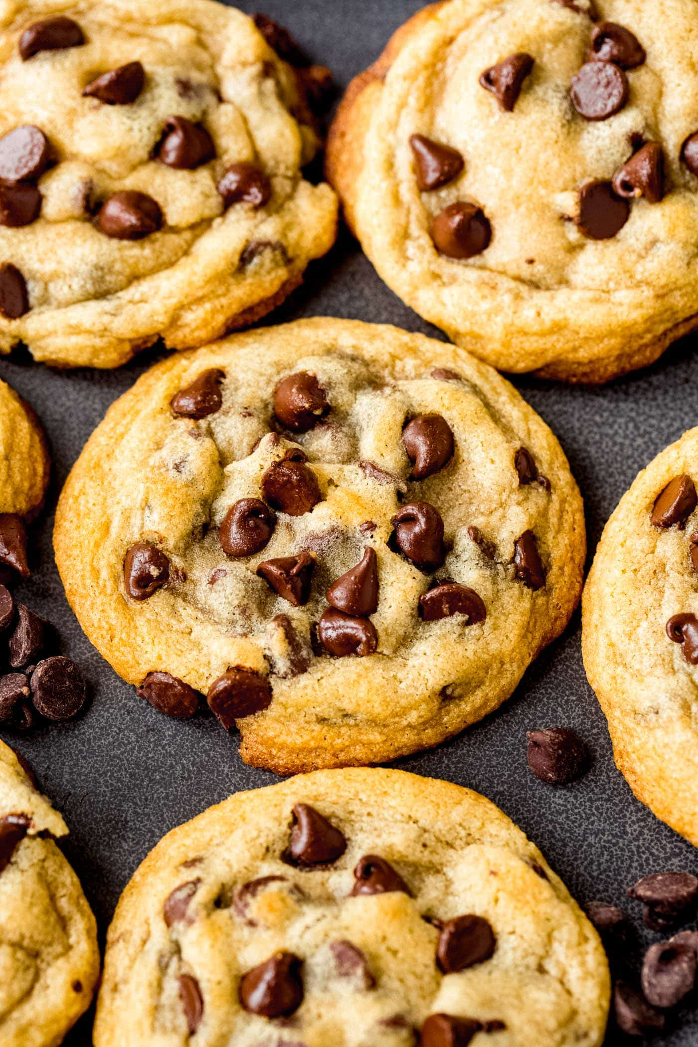 A baking pan with baked chocolate chip cookies. They are golden brown and are packed with chocolate chips.
