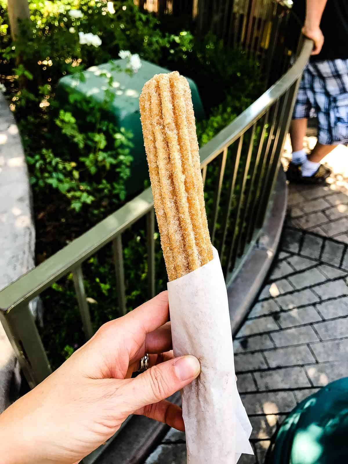 Churro from Disneyland ohsweetbasil.com