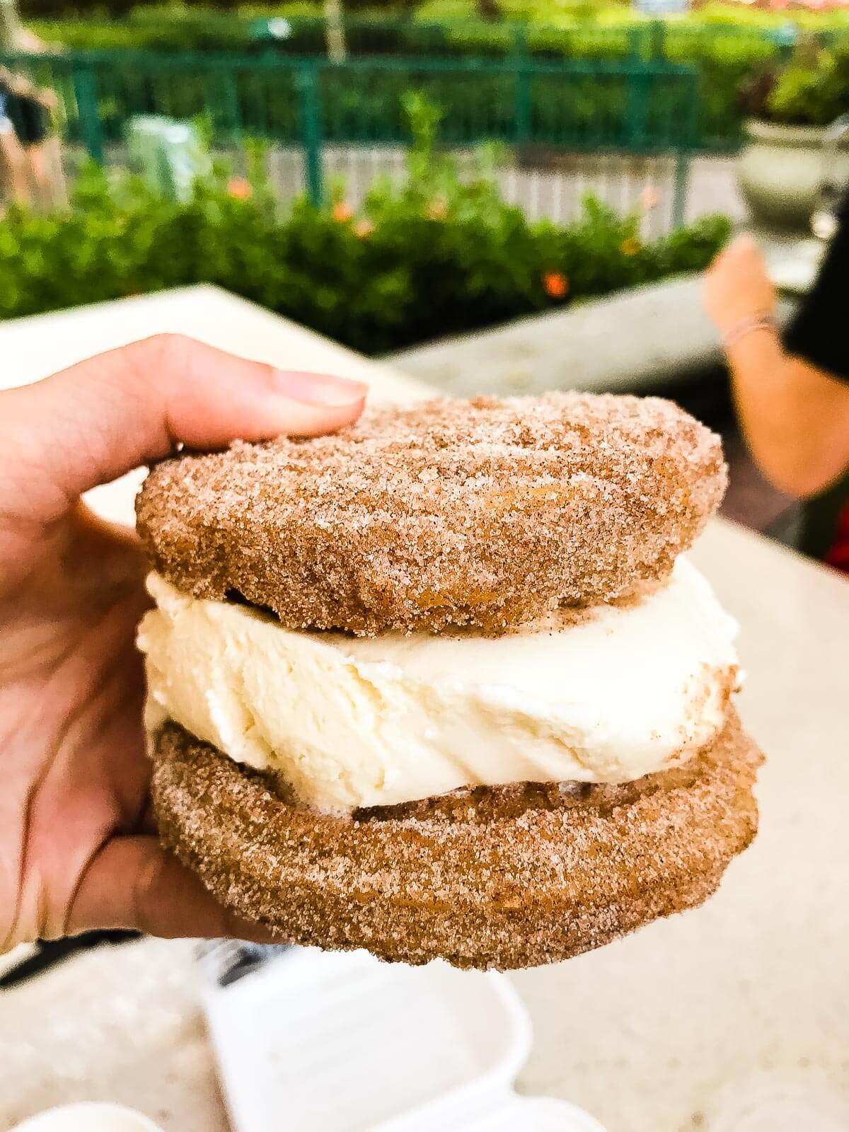 Churro Ice Cream Sandwich From Downtown Disney ohsweetbasil.com