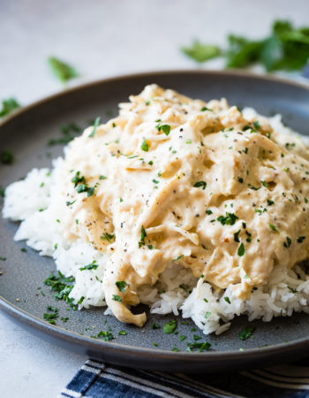 A dark grey plate with a pile of white Jasmine rice with creamy crockpot chicken shredded over the top and a little parsley in the background