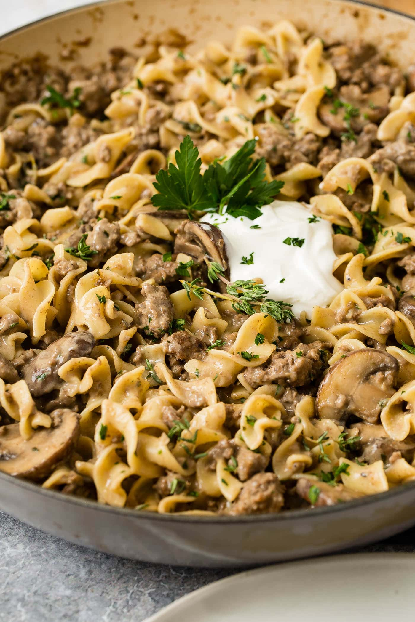 A close-up of a bowl of ground beef stroganoff. There are noodles, ground beef and mushrooms in a sauce with a spoonful of sour cream and parsley flakes on top.