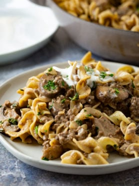 A dinner plate filled with ground beef stroganoff. It is noodles and ground beef in a rich sauce with a spoonful of sour cream on top.