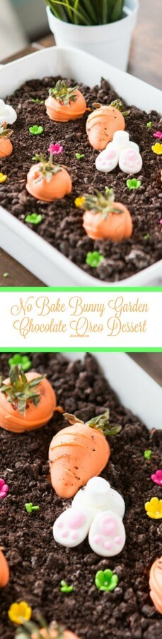 This Easter bunny garden dessert turned out so cute!! ohsweetbasil.com