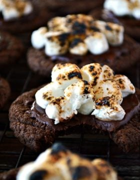 Indulge in these Gluten Free Chocolate Marshmallow Cookies; fudgy chocolate cookies with melted chocolate and gooey, toasted marshmallows on top. Try to keep your hands off these!