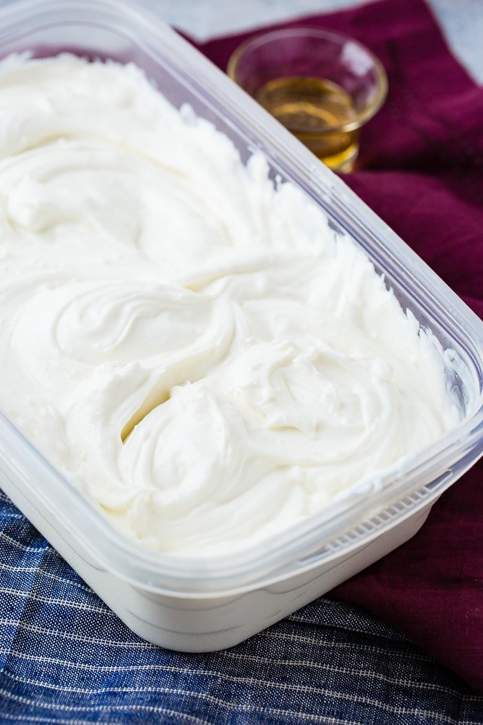 instant pot Homemade yogurt in a tupper ware container with a small serving of honey