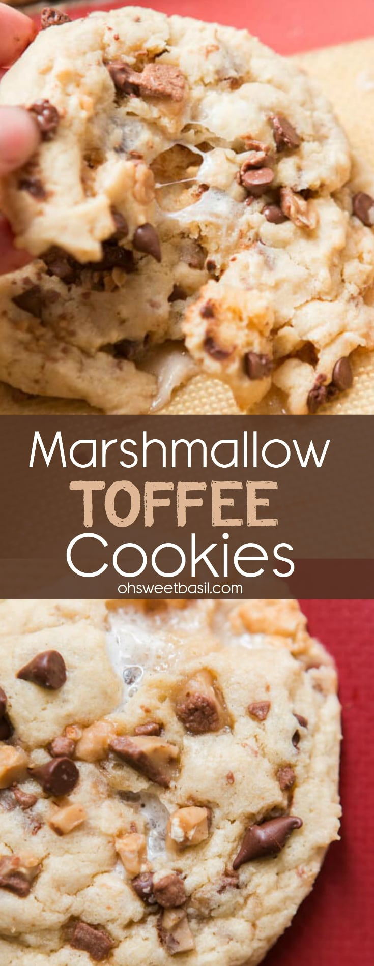 A marshmallow toffee cookie with bits of chocolate chips, toffee and ooey gooey marshmallows