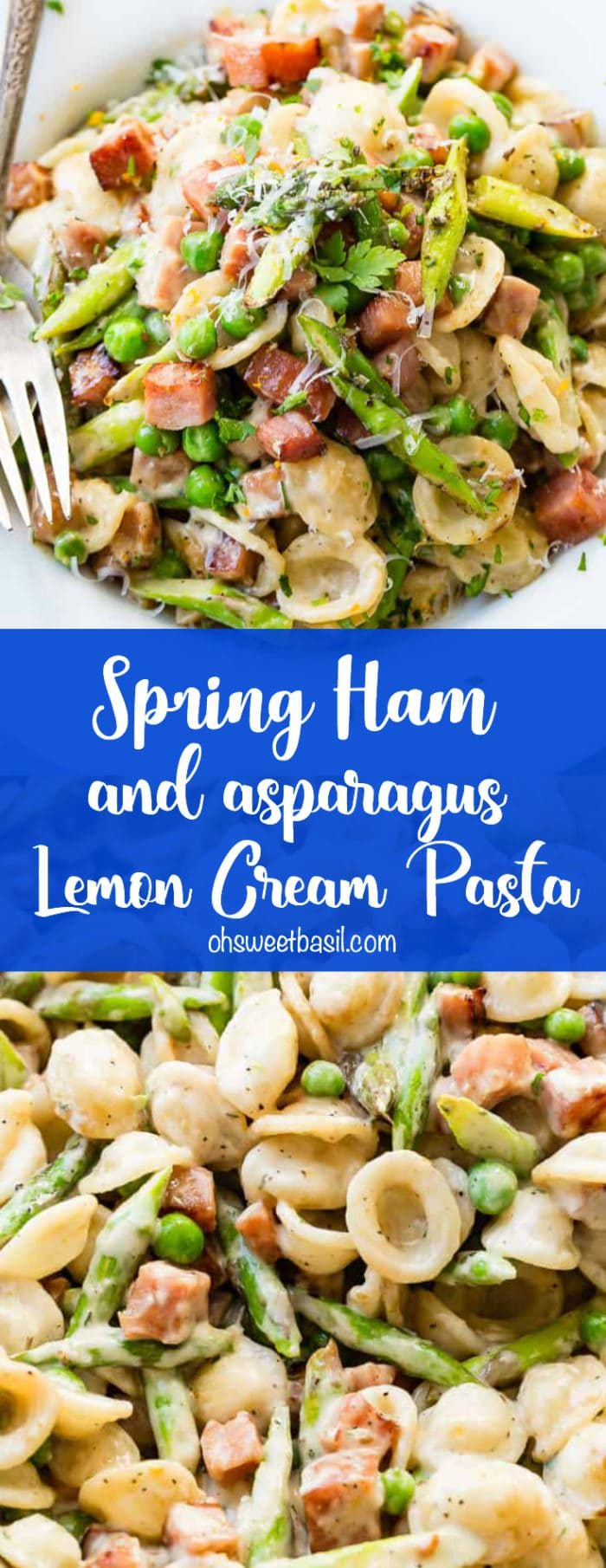 A photo of a white bowl full of cubed ham, asparagus, peas, and orcehiette pasta all in a lemon cream sauce.