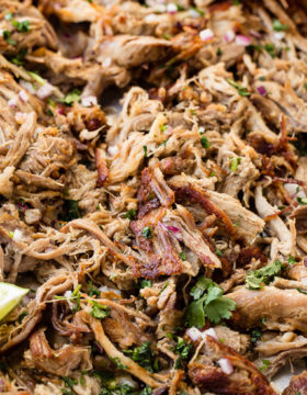 pork carnitas with fresh cilantro chopped up on top